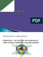 Introd Bioquimica