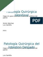 Patologia Quirurgica Del Intestino Delgado