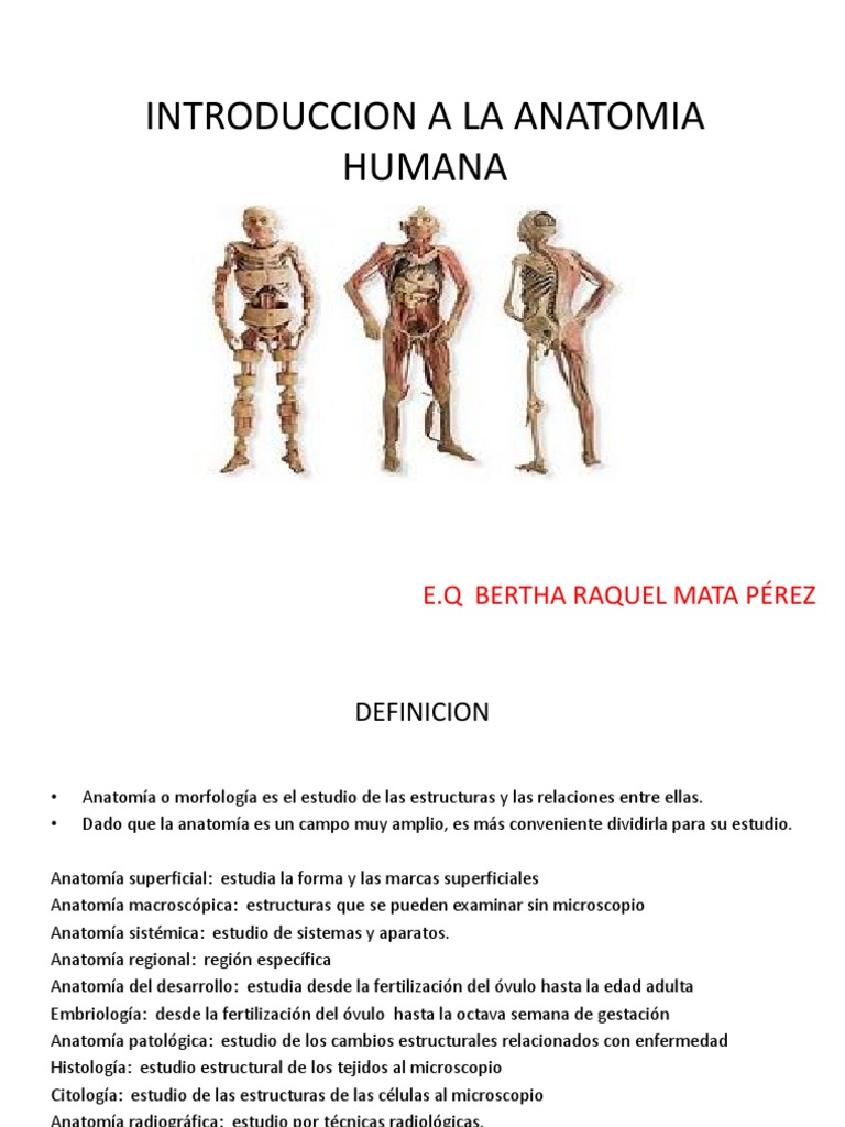 Introduccion a La Anatomia Humana (2)