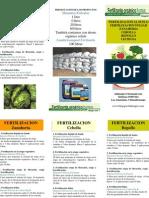 Programa Fertilizacion Cebolla, Zanahoria Repoll y Lechuga