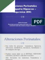 Alteraciones Perinatales