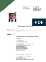 Curriculum Luis Aaron Maya Perez (1)