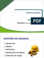 GESTION_DE_RIESGOS_2011