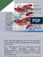 enfermedades metabolicas de las proteinas aa y ac. nucleicos