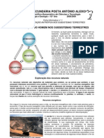 Tema 1 - Ficha Informativa 1