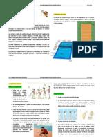 Apuntes 3º (voleibol)