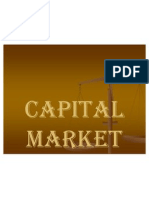 25013906 Capital Market