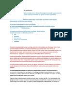 Definición de las enfermedades autoinmunes