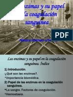 Las enzimas y su papel en la coagulación