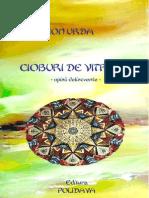 Ion Urda - Cioburi de Vitraliu
