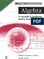 Algebra - Exercitii Si Probleme Pentru Liceu