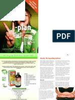23928690-V-Plan-Guide