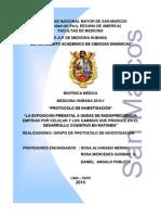 Protocolo de Investigacin... Oficial