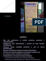 300791_Aula 12 -  lipideos