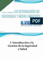 Sistemas de Integracion de Seguridad y Medio Ambiente