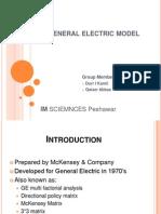 General Electric Model (GE Multi-factorial analysis)