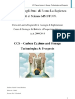 Relazione Carbon Capture and Storage (PDF)