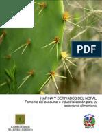 BrochureHarinadeNopal (4) (1)