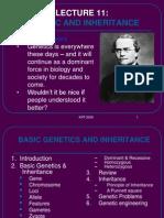 Genetic Inheritance Krt