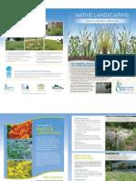 Iowa; Native Landscaping Brochure - Rainscaping Iowa