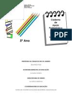 caderno5AnoProfessor