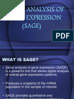 Serial Analysis Of