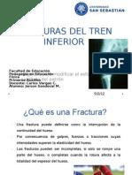 p Aux. Fracturas Del Tren Inferior - Copia