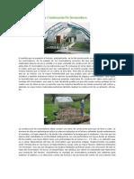 Condiciones Para La Construcci n de Invernaderos