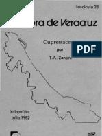 Fascículo 23 Cupressaceae