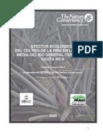efectos ecologicos del cultivo piña en cuenca media del rio general terraba costa rica