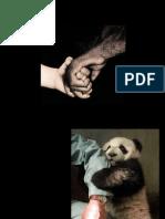 Emberek és állatok