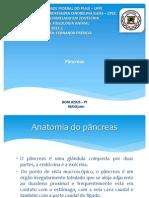 Senimario Pancreas