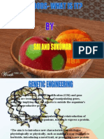 GM FOODS by sai sukumar