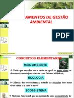 Aula 01_FUNDAMENTOS DE GESTÃO