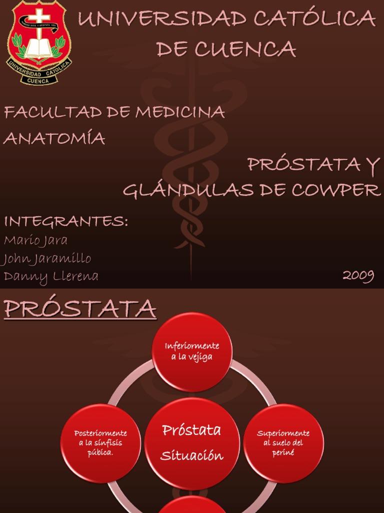 Próstata y Glándulas de Cowper