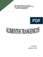 Alimento transgénico  ettore