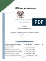 Informe de Examen Preliminar ASBANA