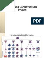 Cardiovascular a System