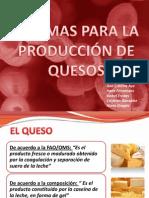enzimas para la producción de queso_A3