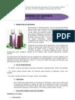 Guía litúrgica para el I. Domingo de Adviento (B)