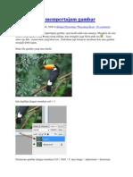 Cara Mudah Mempertajam Gambar