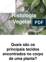 1.Histologia Vegetal -201-2