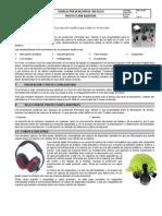 CH-07 Protección Auditiva