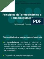 2._Termogenese_e_Termolise