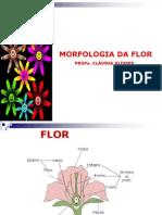 Aula Morfologia Da Flor Cludia