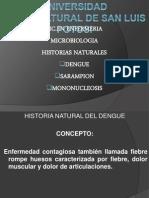 Historias Naturales de Virus
