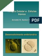 Terapia Celular e Celulas Tronco