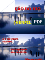 A Licao Do Rio Henfil