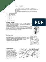 COMPETENCIAS DE ORIENTACIÓN