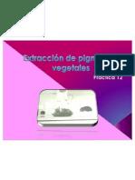 Extracción de pigmentos vegetales